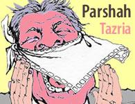 This Week's Torah Portion: Tazria