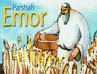 This Week's Torah Portion: Emor