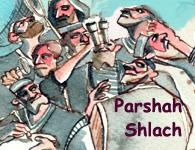 This Week's Torah Portion: Shlach