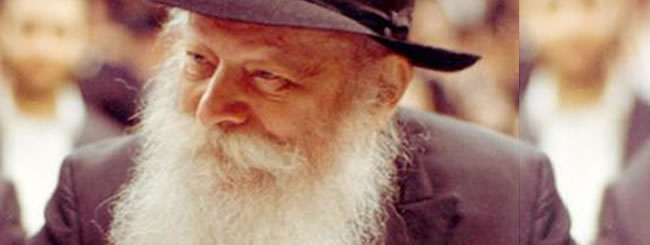 the rebbe  a brief biography