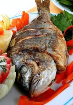 A Guest A Fish And A Prayer Chassidic Thought