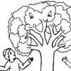 7 fruits for tu bshvat coloring pages | Tu B'Shevat Coloring Pages - The 15th of Shevat - Jewish Kids