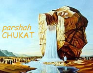 Image result for chukat torah portion images