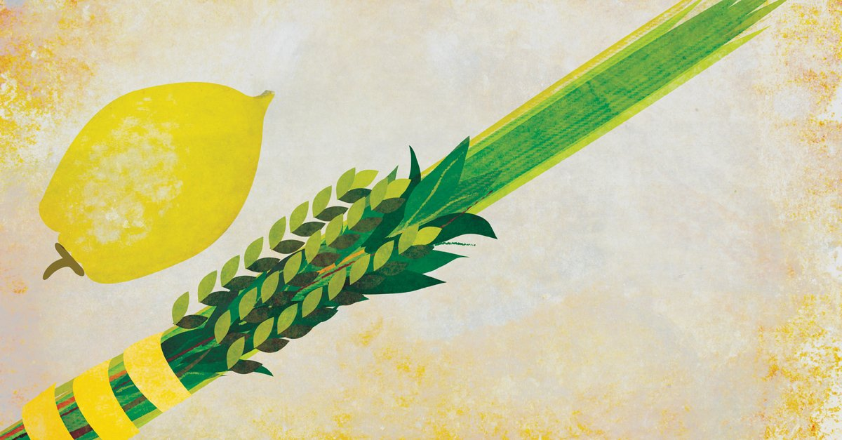 the four kinds  the lulav and etrog - expressing our unity